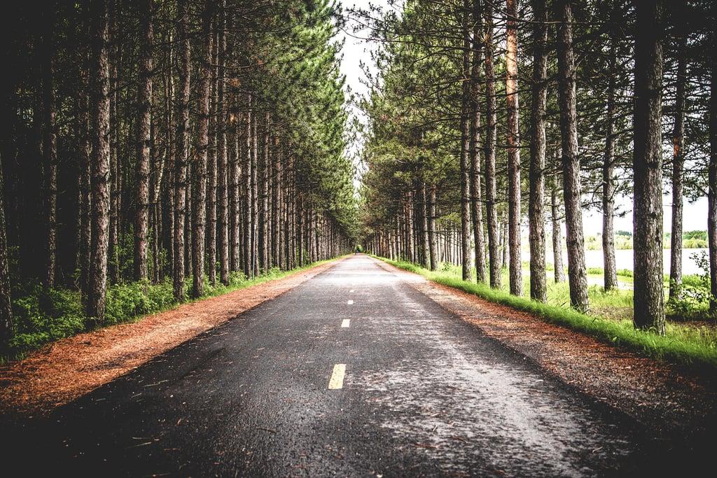 Road-Woods-1920x1280.jpg