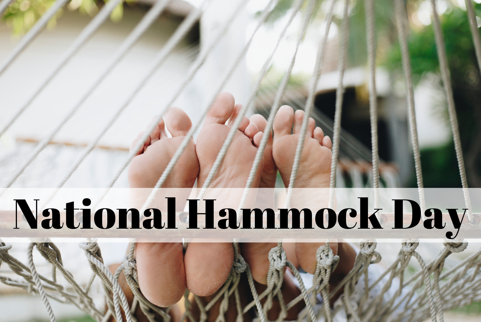 National Hammock Day-1