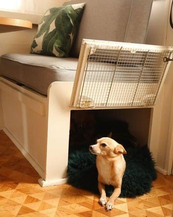 RV Dog Kennel