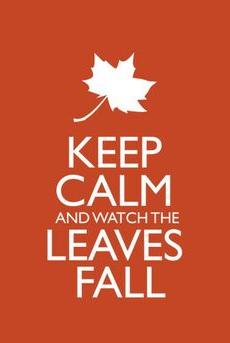fall image 3-1.png